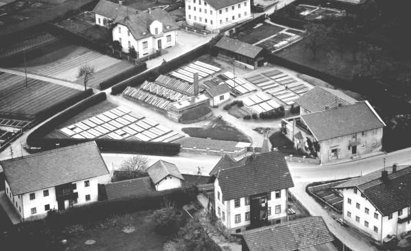 Das Luftbild zeigt die Gärtnerei in den 1950er Jahren.